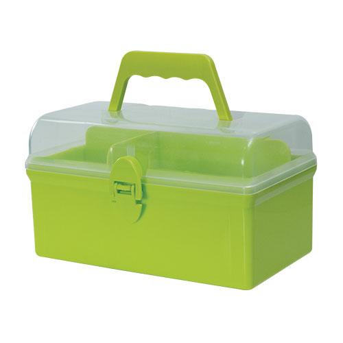 Medicine Storage box RTG Lime Green